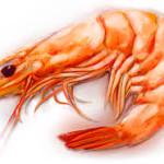 Astaxanthine voorkomt dikke darmkanker en remt borstkanker, zo blijkt uit onderzoek. Astaxanthine komt veel voor in rood gekleurd zeevoedsel, zoals garnalen.