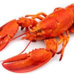 Astaxanthine voorkomt dikke darmkanker en remt borstkanker, zo blijkt uit onderzoek. Astaxanthine komt veel voor in rood gekleurd zeevoedsel, zoals kreeft.